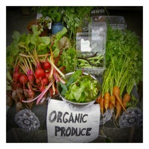 Why choose an organic meal delivery service you ask?